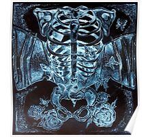 x-ray chest of butterflies Poster