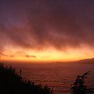 Ocean Fire by NancyC