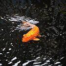 Fish dance by Bluesrose
