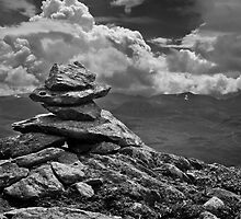 The Top Of The World by ally mcerlaine