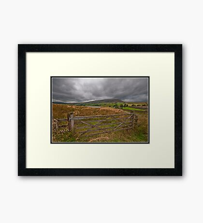 Barley views Framed Print