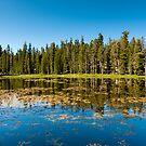 siesta lake by peterwey