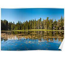 siesta lake Poster