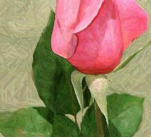 Spring Rose In Colored Pencil by Julie's Camera Creations <><