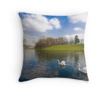 Serenity in the city Throw Pillow