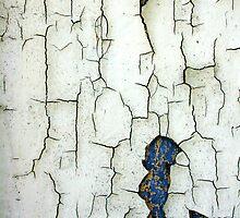 Once Yellow, Then Blue, Then White. by Wayne Gerard Trotman