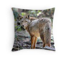 Coyote, Washington state Throw Pillow