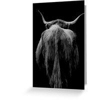Backend of a Bull Greeting Card