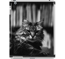 James the Cat - Portrait - 1 iPad Case/Skin