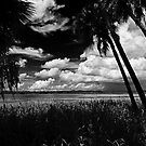 North Lake Myakka 3 by MKWhite