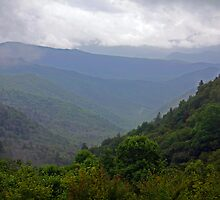 OCONALUFTEE VALLEY IN THE RAIN by Chuck Wickham