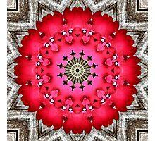 'Very Verbena Mandala' Photographic Print
