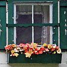 window box by Lynne Prestebak
