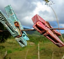 Two aged clothespin as friends on a clothes line by jekuratodistaja