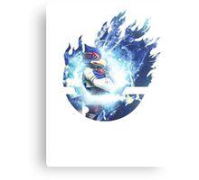 Smash Falco Canvas Print