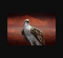 The Glory of an Eagle by Holly Kempe