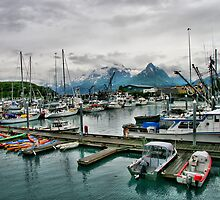 Harbor in Valdez, Alaska by Vickie Emms