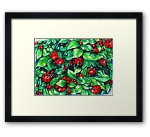 Ladybugs in the Hedge Framed Print