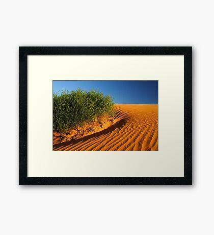 Perry Sandhills Framed Print