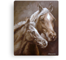 Arab Mare and Foal. Canvas Print