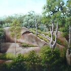 Murrurundi Rockface by Margaret Stockdale