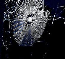 Ariadne's Web by apclemens