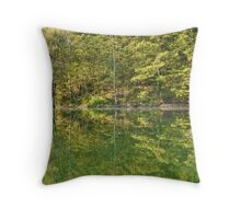 umbrian lake reflection Throw Pillow