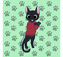 Sweatercats Mister Lincoln Photographic Print