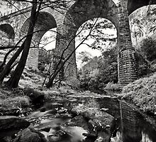 Picton railway viaduct by Martin Healey