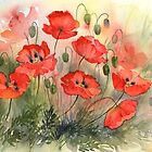 Field Poppies by artbyrachel