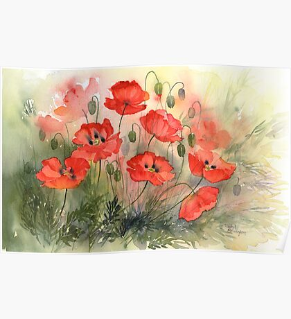 Field Poppies Poster