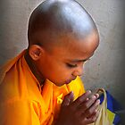 Novice by Anuja Manchanayake