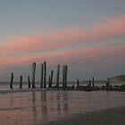 ~Port Willunga~ by Debra LINKEVICS