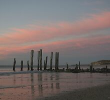 ~Port Willunga~ by Debra LINKEVICS