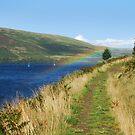 rainbow sail by dinghysailor1
