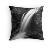 Shawnee Falls (up close) Throw Pillow