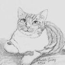 Sketch of Sketchy the Cat by Linda Costello Hinchey
