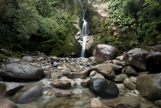 Dorothy Falls, Lake Kaniere. by Michael Treloar