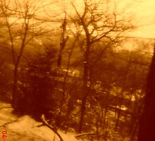 Snow scene in sepia by wendy1968
