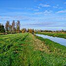 Norfolk Landscape UK by Mark Snelling