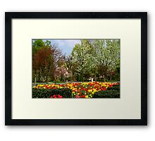 Spring In The Park Framed Print