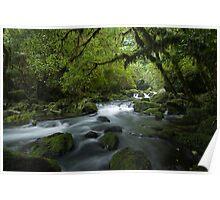 Riwaka River. Poster