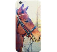 Contemplating a Trail Ride iPhone Case/Skin