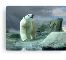 Ready for Blue Skies Canvas Print