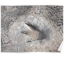 Dinosaur Footprint at Dinosaur Valley State Park in Texas Poster