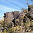 Petroglyphs by Susan Russell