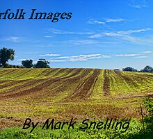 Norfolk Images by Mark Snelling