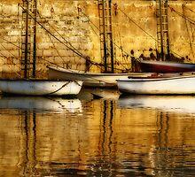 All Tied Up ~ Lyme Regis Harbour by Susie Peek