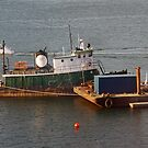 Boston Harbor, tug boat by gailrush