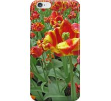 Yellow and Red Tulips photograph iPhone Case/Skin